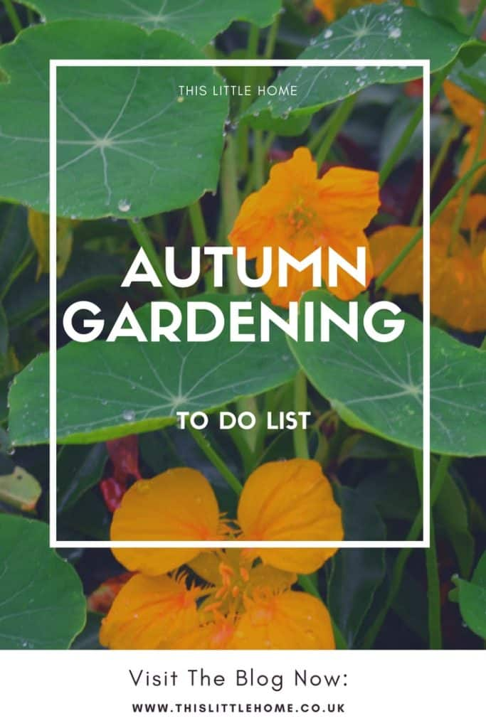 Autumn Gardening To Do List