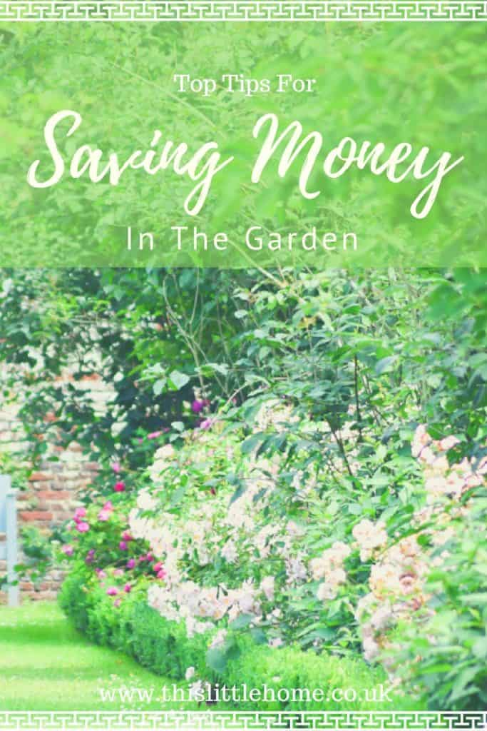 7 Top Tips for Saving Money in the Garden