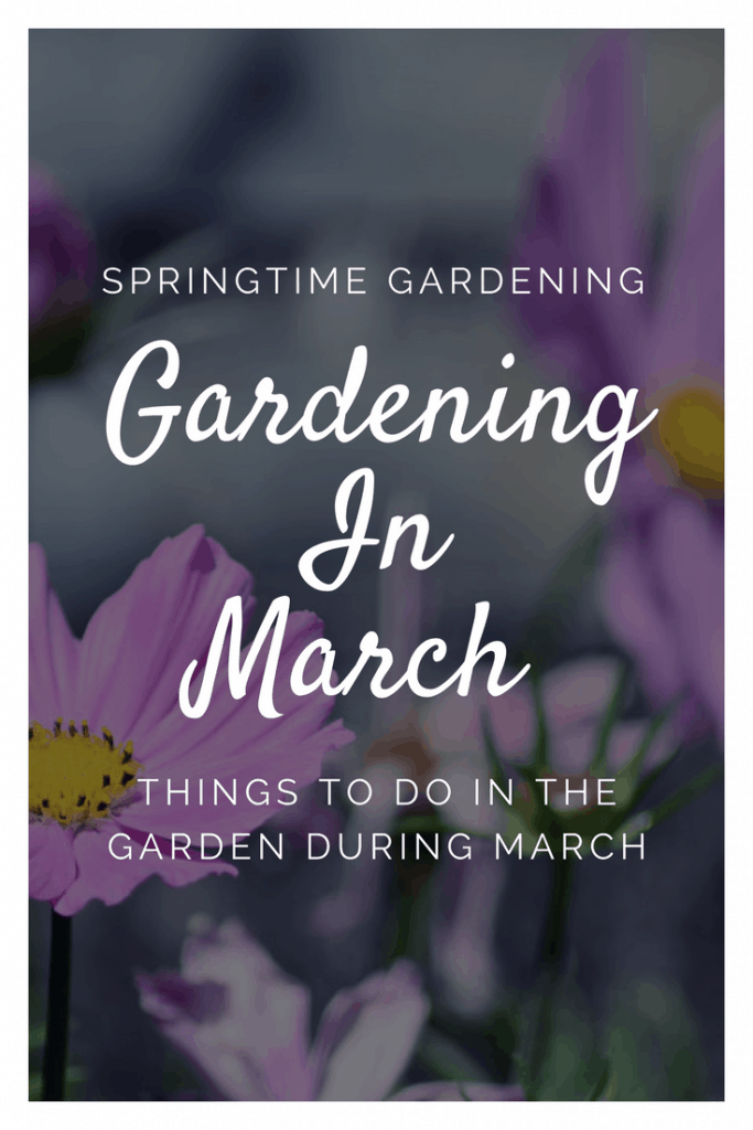 things to do in the garden in march spring gardening tips for the garden