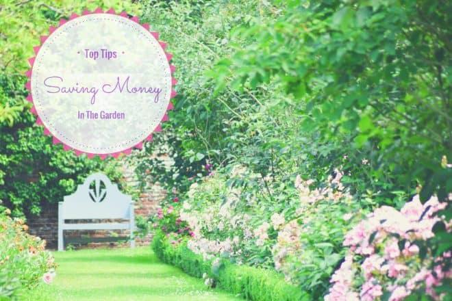 7 Top Tips for Saving Money in the Garden